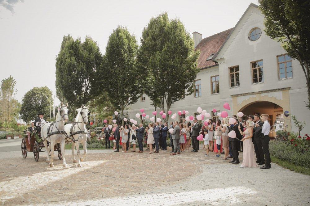 Castle Wedding Austria vineyard Weingut Thaller wedding party outside